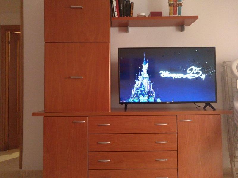 Televisión gran formato