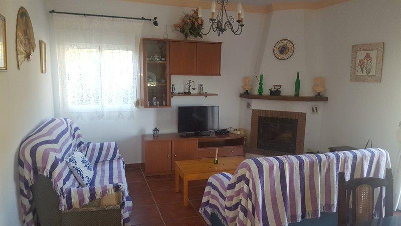 Sala de estar 1 con chimenea