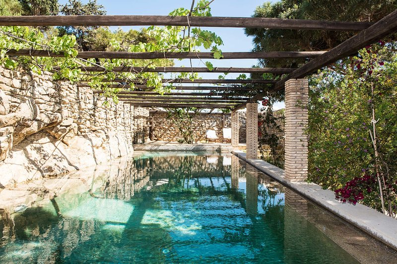Villa Oasis, vacation rental in Aggelika