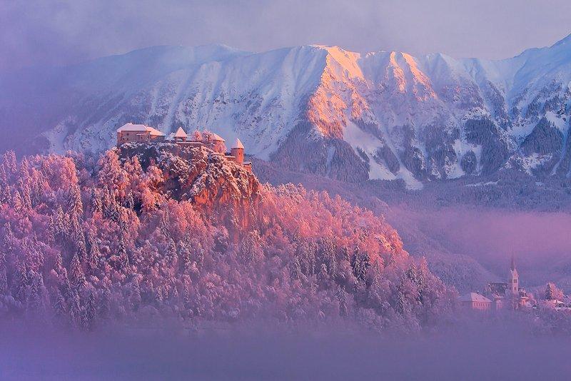 Burg von Bled ist die älteste Burg in Slowenien, es ist eine 15-minütige Fahrt von der Wohnung