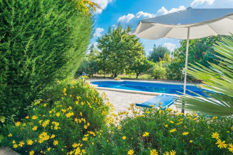 Cal LLoro, vacation rental in Pollenca