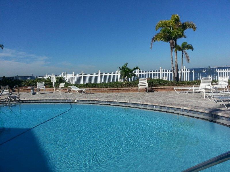 Beautiful pool next to Tampa Bay