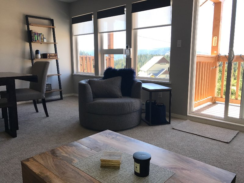 Beautiful views over Strathcona park from the living room and a small deck for BBQing