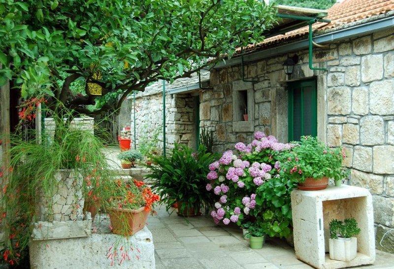 Holiday Home 3709-2 for 5 Pers. in Žrnovo, vacation rental in Zrnovska Banja