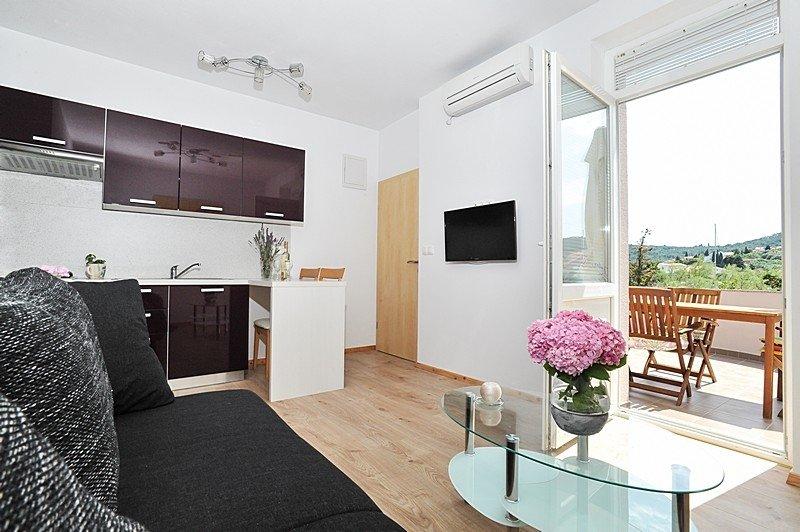 Apartment 3617-2 for 4 Pers. in Poljana, holiday rental in Polvljana