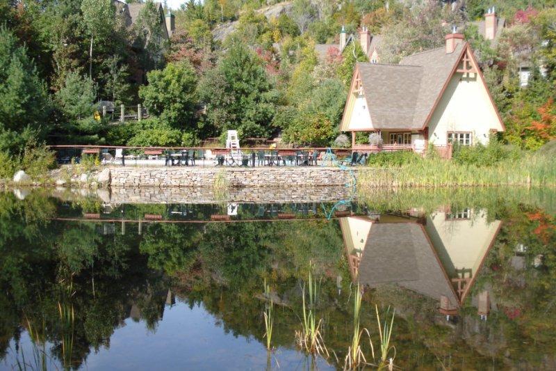 Lovely Pond near Pool Area