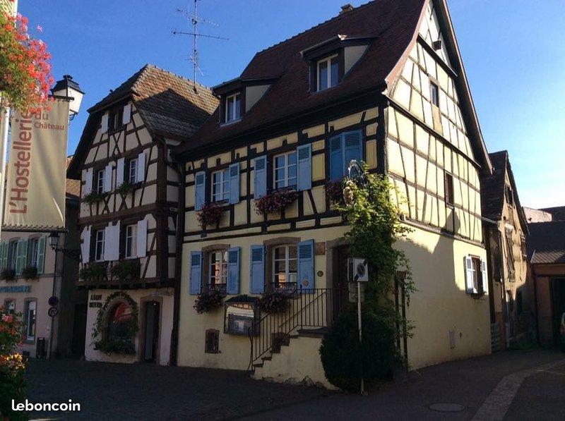 The vineyards of Eguisheim