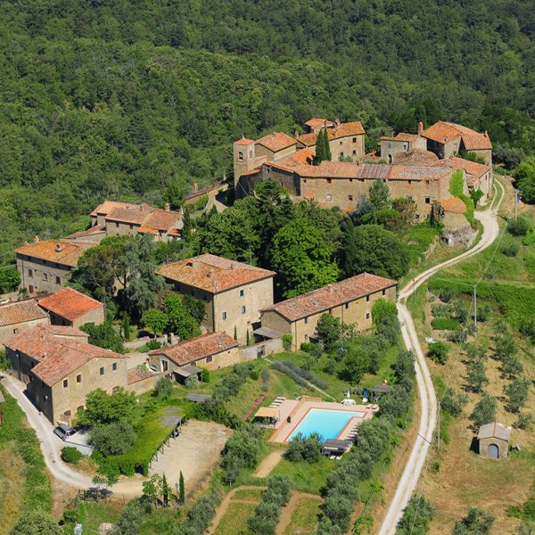 Areal view of the swimming pool and the nearby castel
