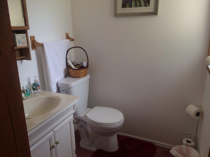 Paris room half bathroom