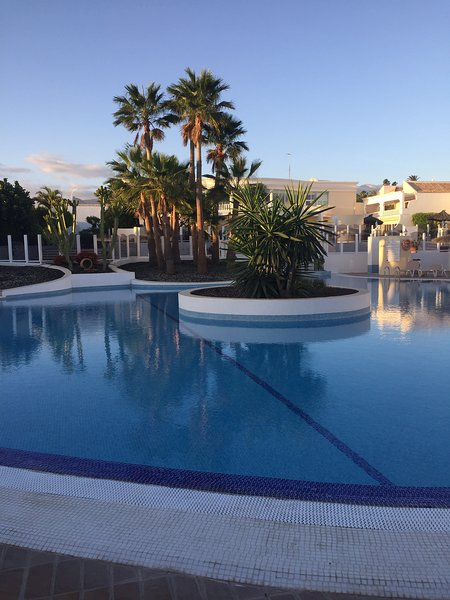Main pool on the Palms, a few yards from number 16