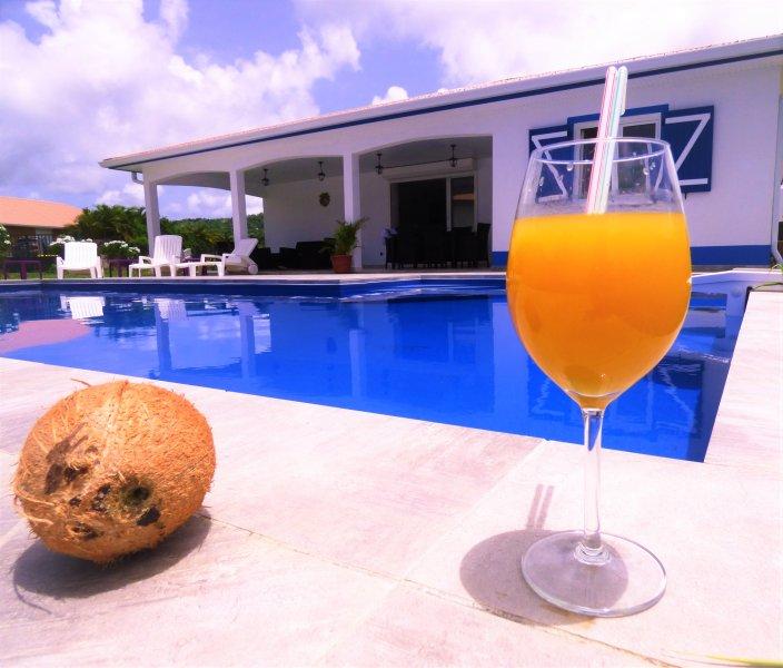 VILLA F5 DE STANDING, GRANDE PISCINE 10x5M, VUE MER, TOUTE EQUIPEE, UNE PERLE !, casa vacanza a Arrondissement of Le Marin