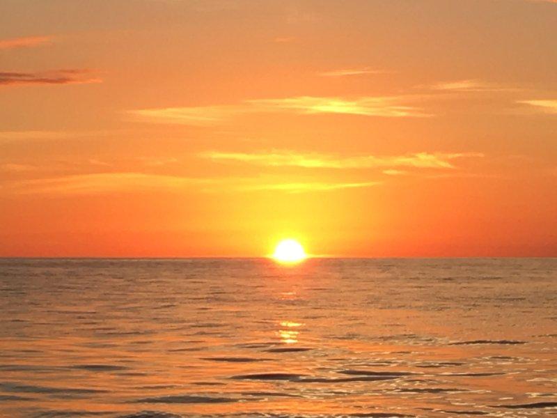 costa oeste típico de Florida puesta de sol. Esto se puede ver todas las noches!