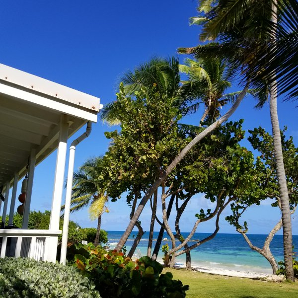 Rental Homes Bay Area: Dutchman's Bay Beachfront Cottages Has Shared Outdoor Pool