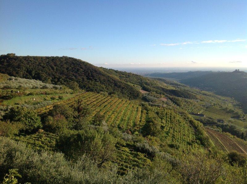 la vista en el castillo Illasi y Soave y Tramigna valle del pueblo de Campiano