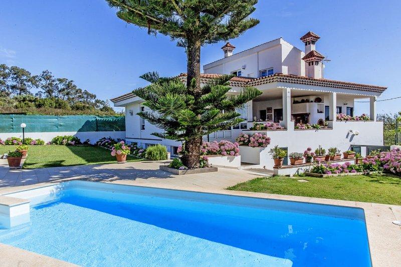 Villa Tres Chimeneas, holiday rental in Hoya de Pineda