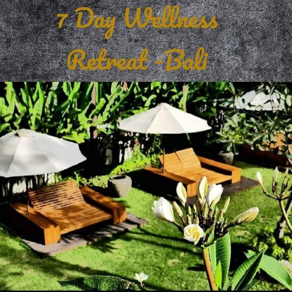 Explore and Restore Wellness Retreat in God's Island Bali .coming soon. ❤