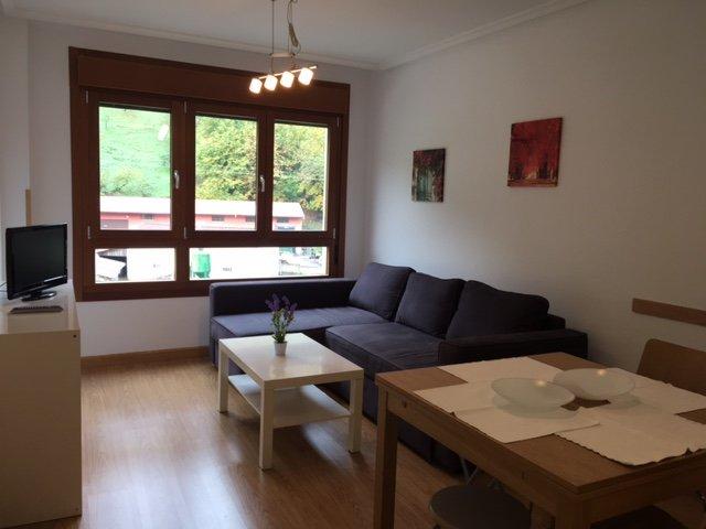 Apartamento de alquiler para esquiar en Felechosa, vacation rental in Campiellos