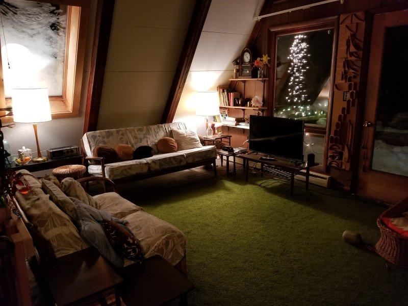 Main living room with skylight