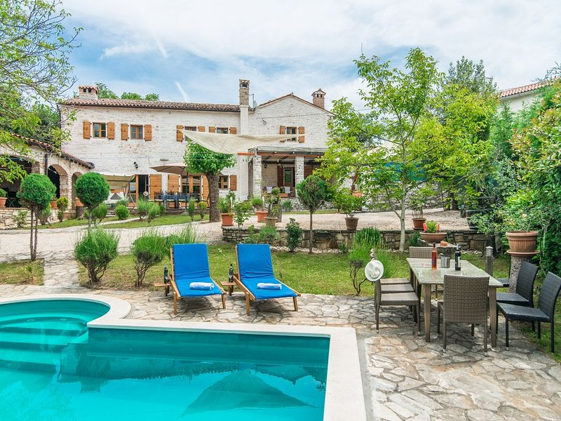 Luxury Villa Bergi with Pool, vacation rental in Zminj