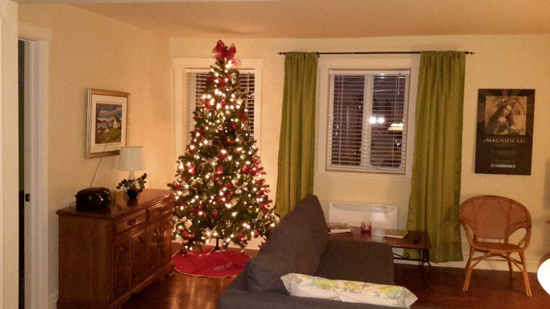 Holiday Season Salon
