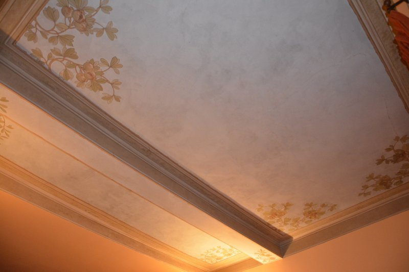 Living room, painted ceiling