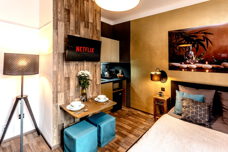 ❄ AC ❄ FREE GARAGE ❤️ NETFLIX ❤️ 15Min Old Town, vacation rental in Ricany