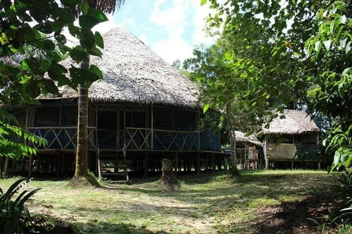 Amazon Peru Lodge Offer Expeditions,Wild Adventures deep in the jungle of peru, location de vacances à Iquitos