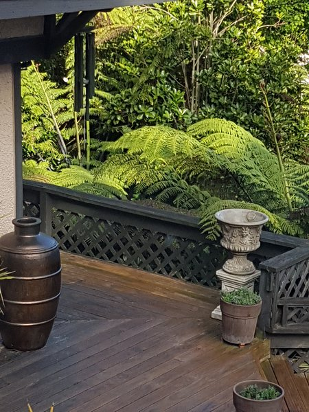 Decor and native Punga (Tree Fern) trees surrounding the deck and in the garden below