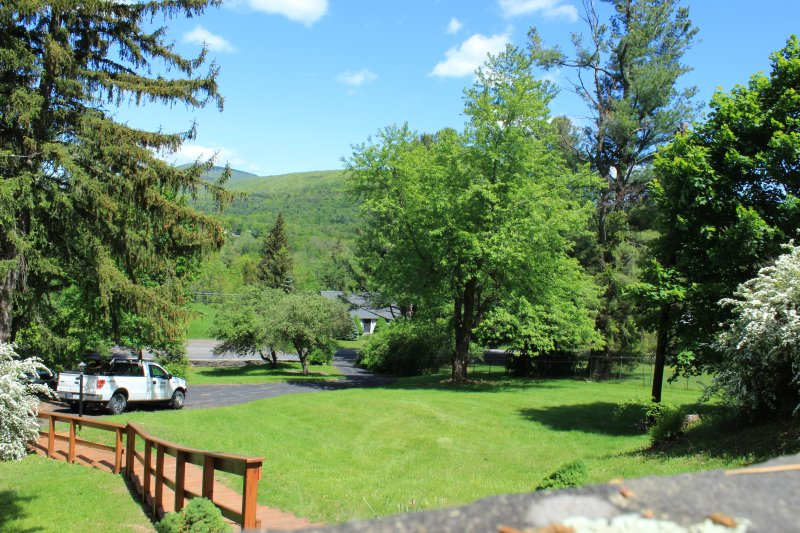 The view from our porch