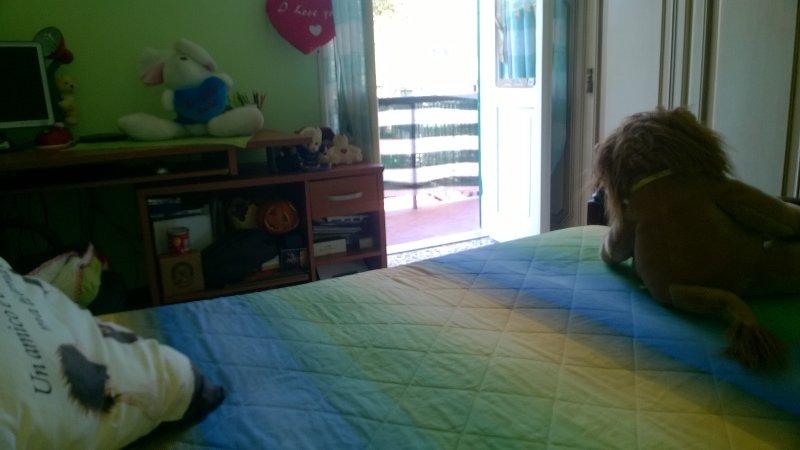 LIGURIA DA VIVERE 3, vacation rental in Diano Borello