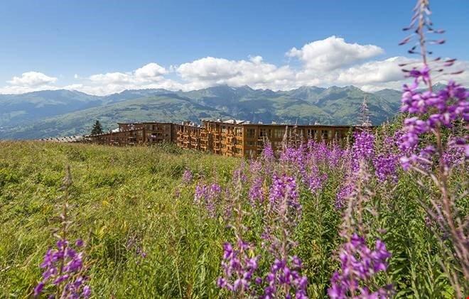 Bloemen bloeien in de noordelijke Alpen