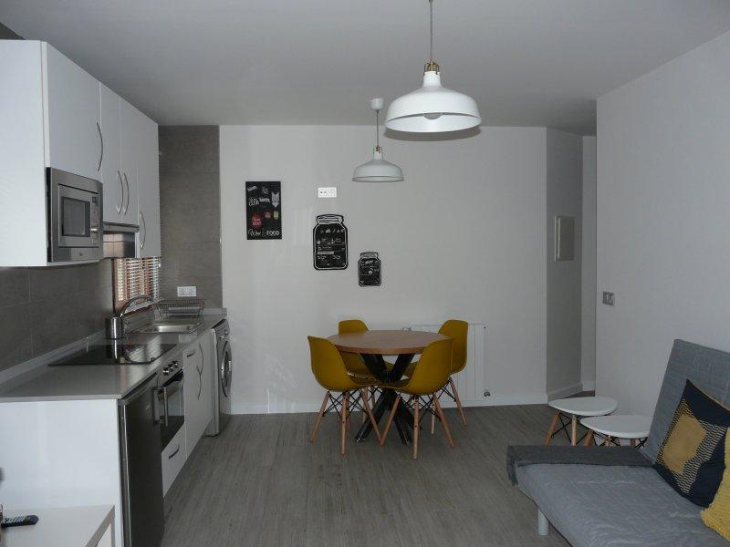 Cocina-salon con sofa-cama grande y chimenea