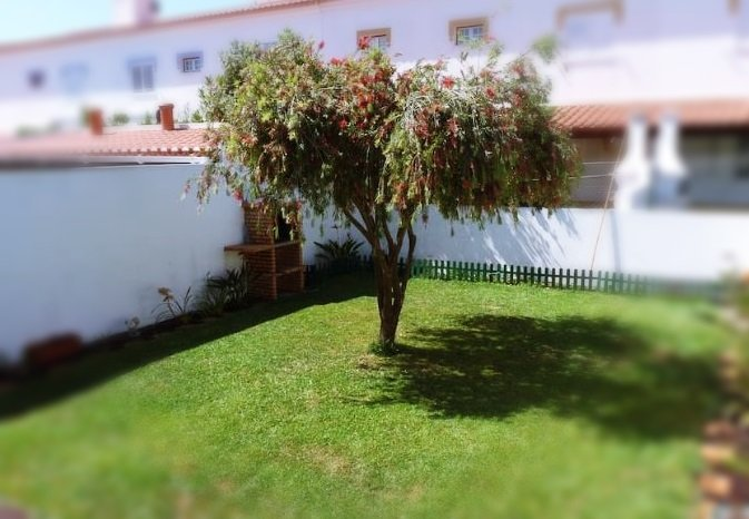 Almograve Beach and House Country, vacation rental in Odemira