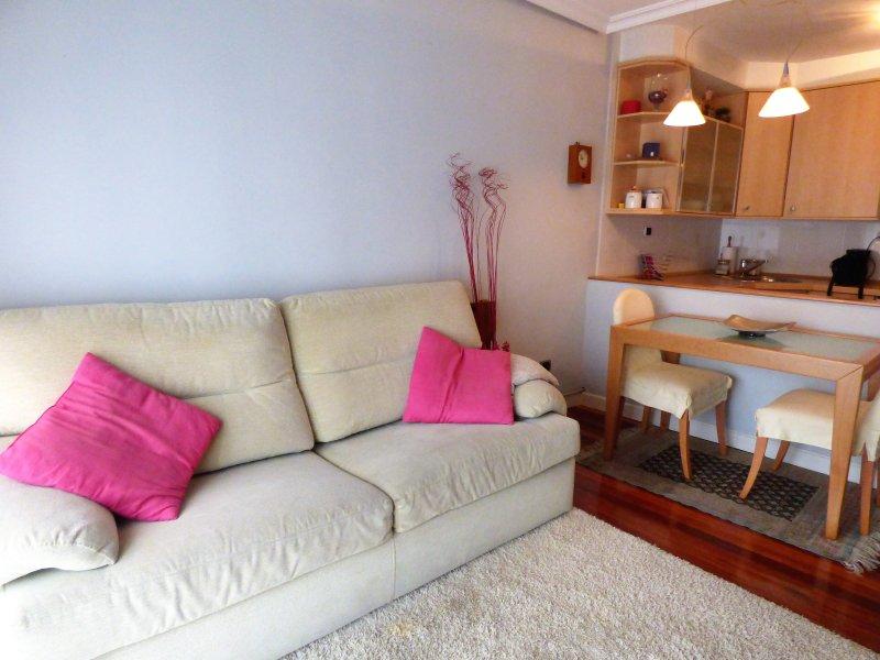 Fabuloso apartamento en el centro de Zarauz, holiday rental in Zumaia