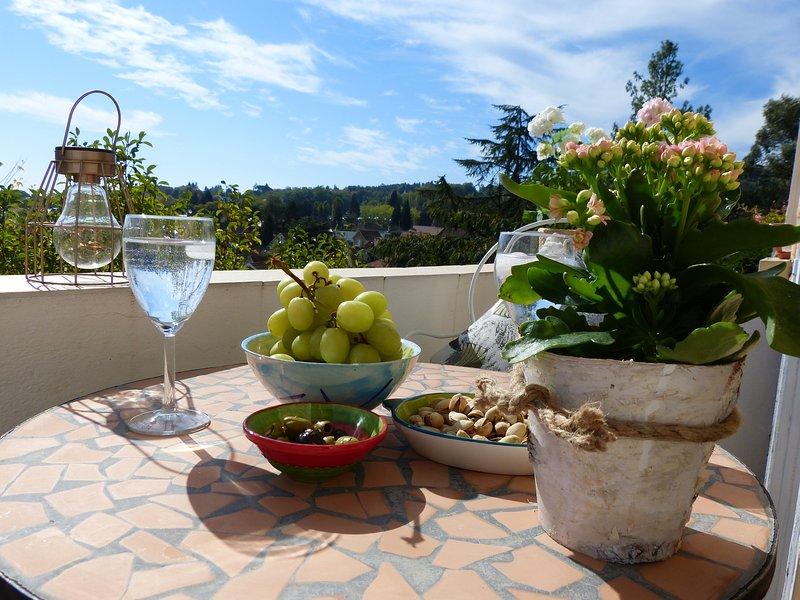 Luxury holiday apartment in Dordogne. Cezanne, Maison Pierre D'Or, Sarlat, location de vacances à Sarlat la Canéda