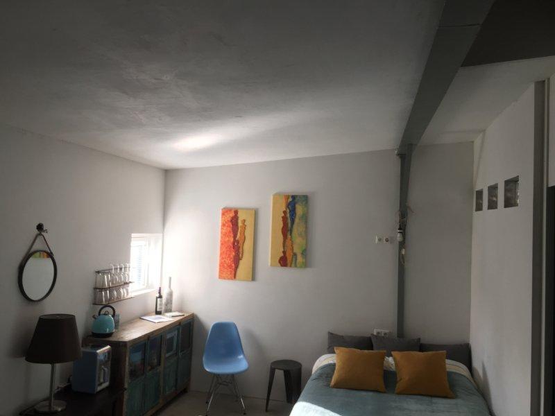 IBIZA HOUSEBOAT LOFT AMSTERDAM, holiday rental in Zaandam
