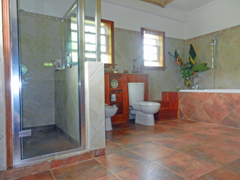 The master bathroom with extra large shower cubicle ,bath, bidet, and WC etc