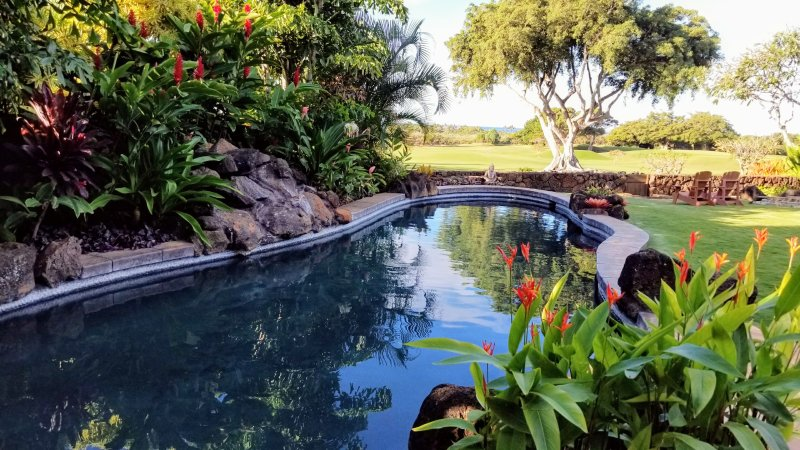 Private HEATED Tropical Lagoon Pool complete with ocean views. Enjoy the pool year-round in comfort!