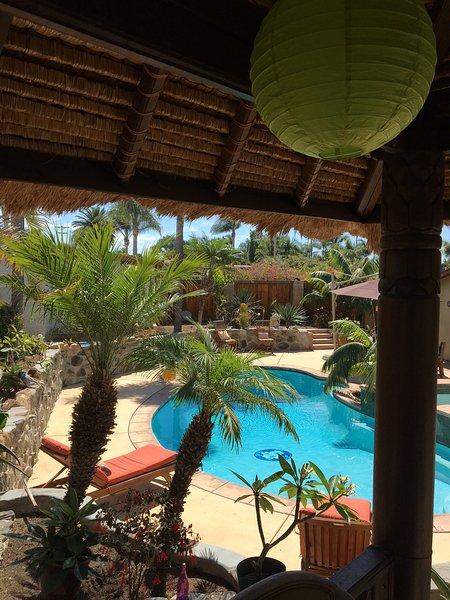 Blick auf den Pool aus dem Innern der Bali-Hütte.