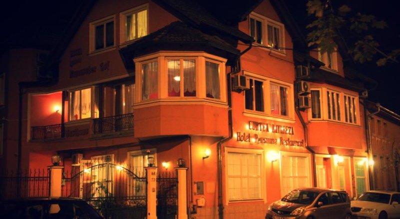 Curtea Bavareza Pensiune, vacation rental in Targu Mures