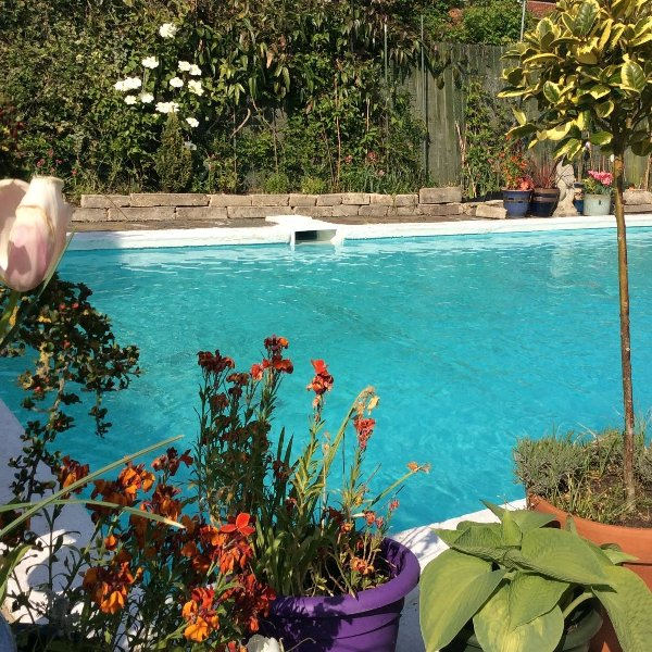 Logan Cottage Pool