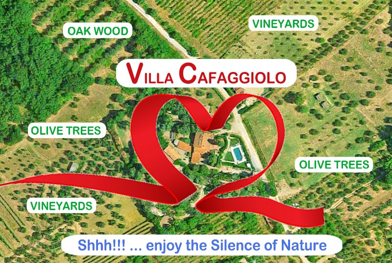 VILLA CAFAGGIOLO-FLORENCE: 195+ EXCELLENT REVIEWS on TRIPADVISOR. You'll like., vacation rental in Pontassieve