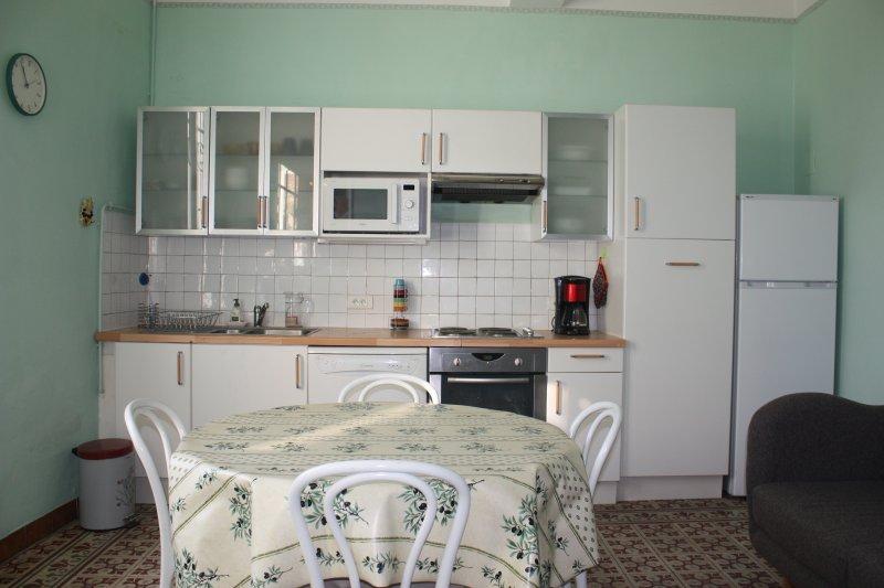 La cuisine/séjour. Lave-vaisselle, four et micro-ondes, plaques, réfrigérateur/congélateur, etc...