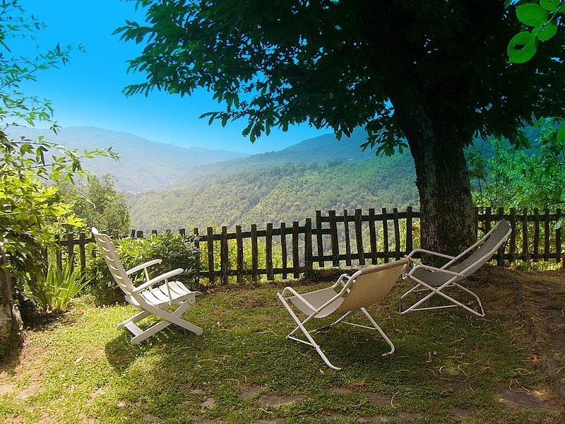 giardino con vista. Un salotto all'aperto con panorama mozzafiato, holiday rental in Pontepetri