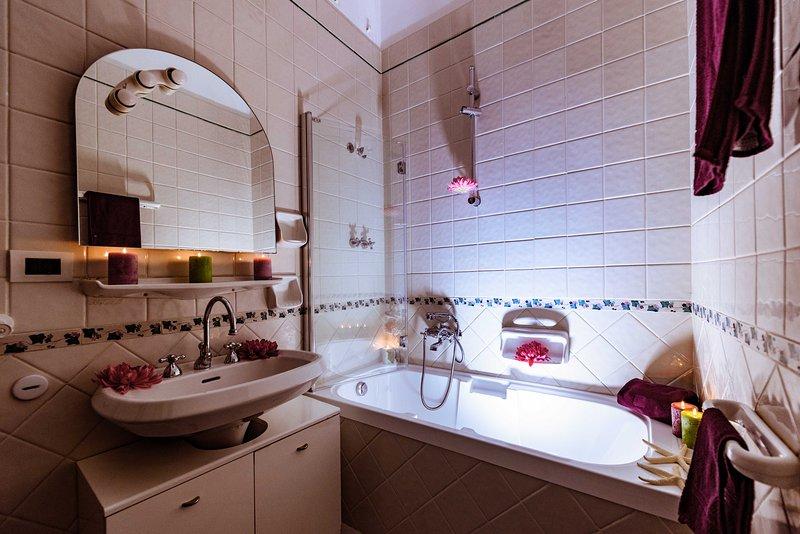 casa de banho principal com chuveiro tubo / banheira