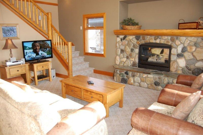 The cabin has a open-concept livindows for great natural lightinging area.