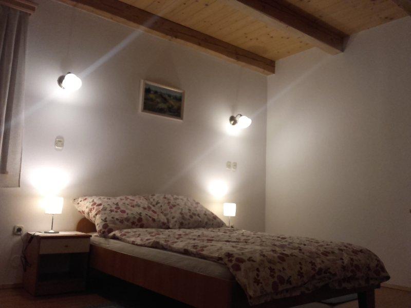 Slovenia resort apartment & rooms, holiday rental in Senturska Gora