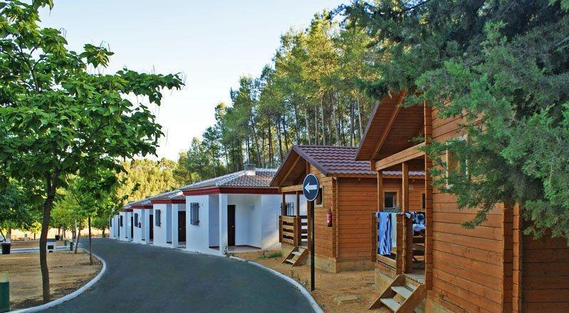 Temos 11 bungalows. Pergunte sobre nossos diferentes tipos de bungalows
