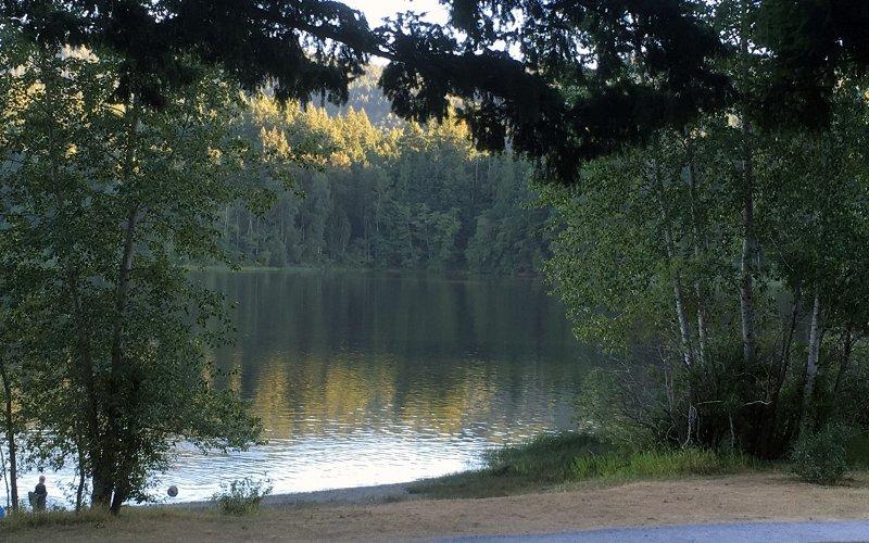 Lago Padden está a 5 minutos. Natación, pesca, golf, remar en verano.