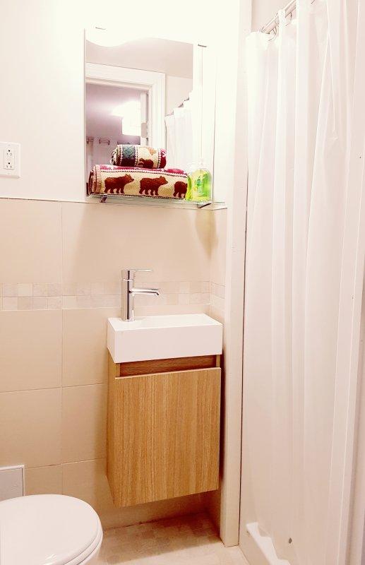 The bathroom. La salle de bain.